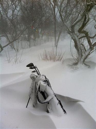 Golf Clubs in Snow