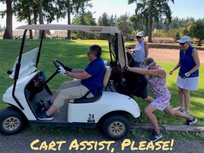 Cart Assist, Please!