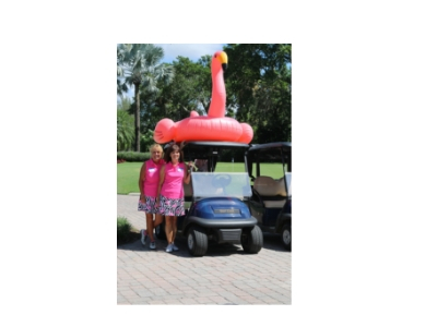 flamingo cart