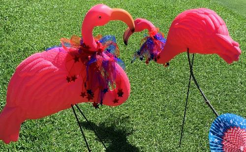 Flamingo Hole