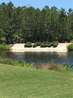 LPGA Scramble 2019