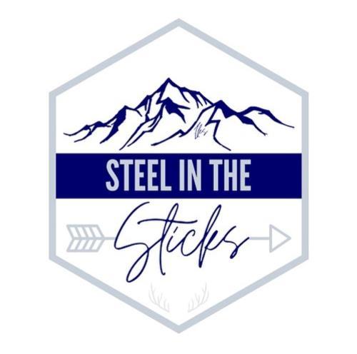steelinthesticks